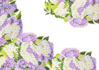 Background with a blossoming lilac