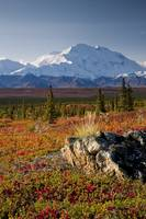 Scenic view of Mt. McKinley during Autumn Denali N