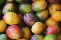 Hawaii, Oahu, Honolulu, Fresh, Ripe Mangoes For Sa