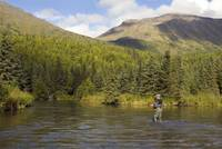 Fly Fisherman casting for Dolly Varden Quartz Cree