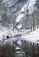 Powerscourt Waterfall In Winter, County Wicklow, I
