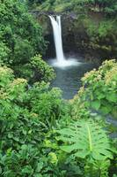 Hawaii, Big Island, Rainbow Falls, Pool Surrounded