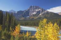 Athabasca River In Autumn, Jasper National Park, A