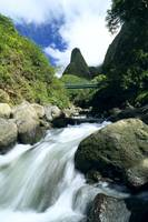 Hawaii, Maui, Iao Valley, Iao Needle In Background