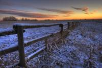Early Morning Snow On A Cattle Fence, Rural Albert