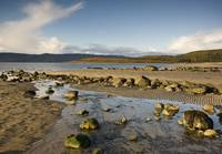 Rocky Beach, Argyll And Bute, Scotland