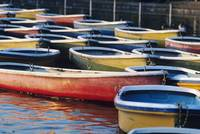 Japan, Tokyo, Ueno Park, Colorful Row Boats Tied T