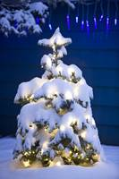 Snow covered Christmas tree with white lights by a