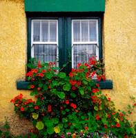 Cottage Window, County Antrim, Ireland