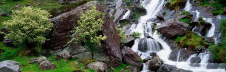 Inchquinn Waterfall, Beara Peninsula, County Kerry