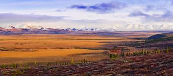 Arctic Circle, Fall Colours And Richardson Mountai