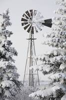 Old Windmill And Trees Covered With Snow And Frost