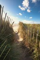 Pathway To The Beach, Beadnell, Northumberland, En