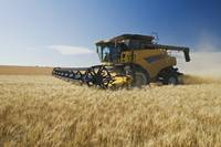 A Combine Harvests Durum Wheat Near Ponteix, Saska