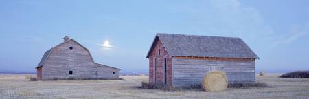 Old Barns, Peace River Area Near Dawson Creek, Bri