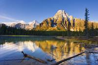 Waterfowl Lakes And Mount Chephren At Sunrise, Alb