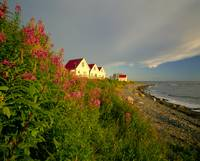 Cottages On St Lawrence River, Petit Vallee, Gaspe