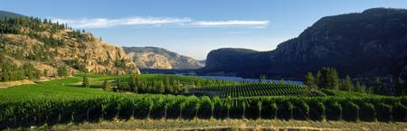 Blue Mountain Vineyard, British Columbia, Canada