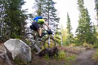 Man Mountain Biking Over Rocks, Anchorage Hillside