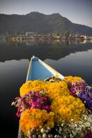 Bouquet Of Flowers In Bow Of Boat, Dal Lake, Srina