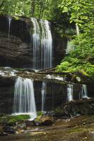 Lush Summer Foliage At Grassy Creek Falls, North C