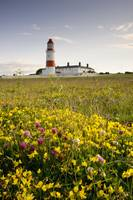 Souter Lighthouse South Shields Marsden, Tyne And