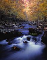 Little River Cascades And Autumn Colors, Great Smo