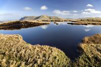 Bog Pool In The Mountains, Connemara, County Galwa