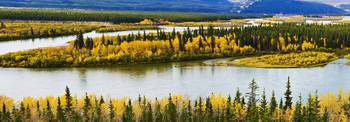 Yukon River And Fall Colours Near Carmacks, Yukon