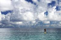 Hawaii, Oahu, North Shore, Stand Up Paddling