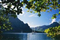 French Polynesia, Moorea, Opunohu Bay, Scenic View
