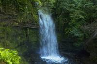 Glencar Waterfall In Yeats Country County Sligo I