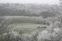 Morning Frost In December At Castelnau-Montratier