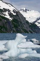 Icebergs in Portage Lake during Summer, Southcentr