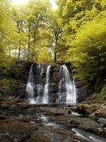 A Waterfall In A Forest, Glenariff Waterfall, Coun