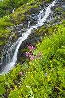 Small waterfall near the coastline of Shoup Bay in