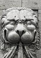 Lion Sculpture, Pope's Palace, Avignon, Provence,