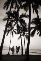Silhouetted Couple Holding Surfboards Among Palm T