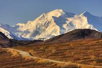 Scenic view of Mt. McKinley and colorful tundra du