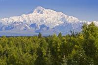 Southside view of Mt. Mckinley Summer, Southcentra