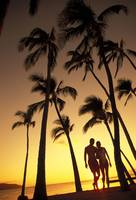 Silhouette Of Romantic Couple In Park At Sunset