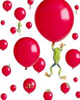Red-Eyed Treefrogs Floating On Red Balloons