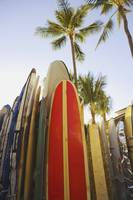 Hawaii, Oahu, Waikiki,Colorful Surfboards In Surfb