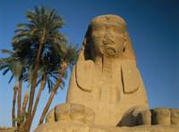Sphinx Statue In Front Of Date Palms Luxor, Egypt