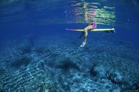 Hawaii, Surfer, Below Surface, Pink/Yellow Board,