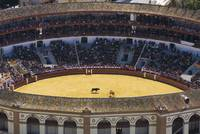 Elevated View Of Bullring, Andalucia, Spain