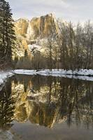 Mountains Reflecting In Merced River In Winter, Yo