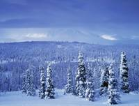 Kluane National Park, Winter, Yukon Territory, Can