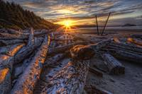 Sunrise Over The Logs At Long Beach, British Colum