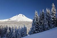Winter Snow Over The Cascade Range Mount Hood, Or